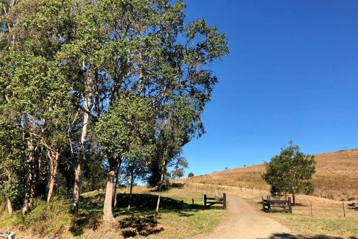 A country road near Delaney's Creek, north of Brisbane, where Mr Utah said he narrowly escaped a murder attempt by Bandidos bikies.
