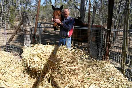 CLOSE CALL: Ron Hughes almost died after a bushfire smothered his Dalysford home in heavy smoke. His neighbour helped him out with hay for his horses as the fire destroyed grass on his property.