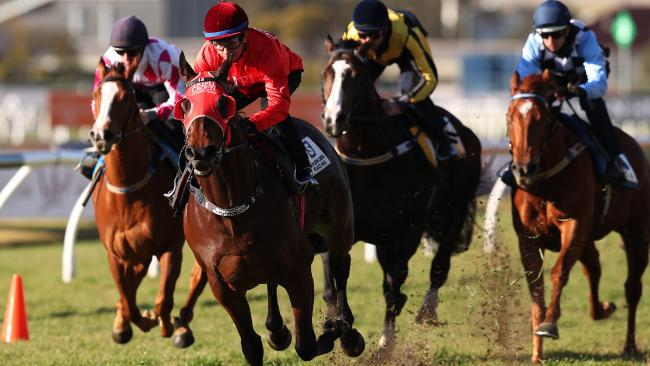 Redzel (red) sets a decent pace in his barrier trial heat at Rosehill. Picture: Brett Costello
