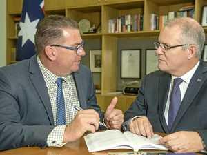 Ipswich MP backs Turnbull as Dutton prepares to strike