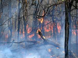 Coast firefighters battle Bruce Highway blaze