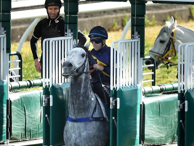 Tommy Berry and Chautauqua jump late during a barrier trial heat at Rosehill Gardens. Picture: Getty Images