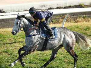 Last chance for Chautauqua to jump-start career