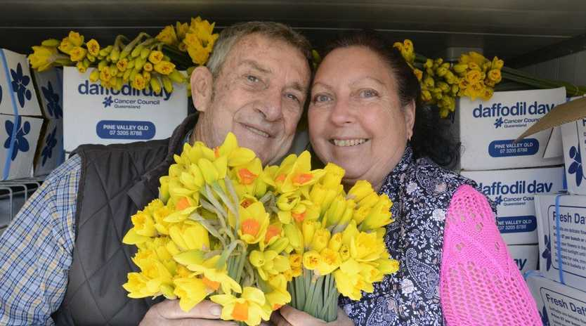 Cancer patient Trevor Cameron and wife Leanne marvel over the delivery of thousands of daffodils to Toowoomba's Olive McMahon lodge.