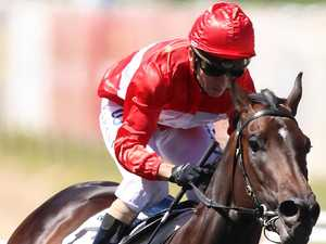 Invincible Star confirmed for The Everest