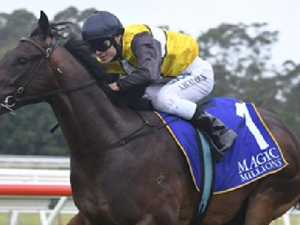 Jonker not scarred by Magic Millions mayhem