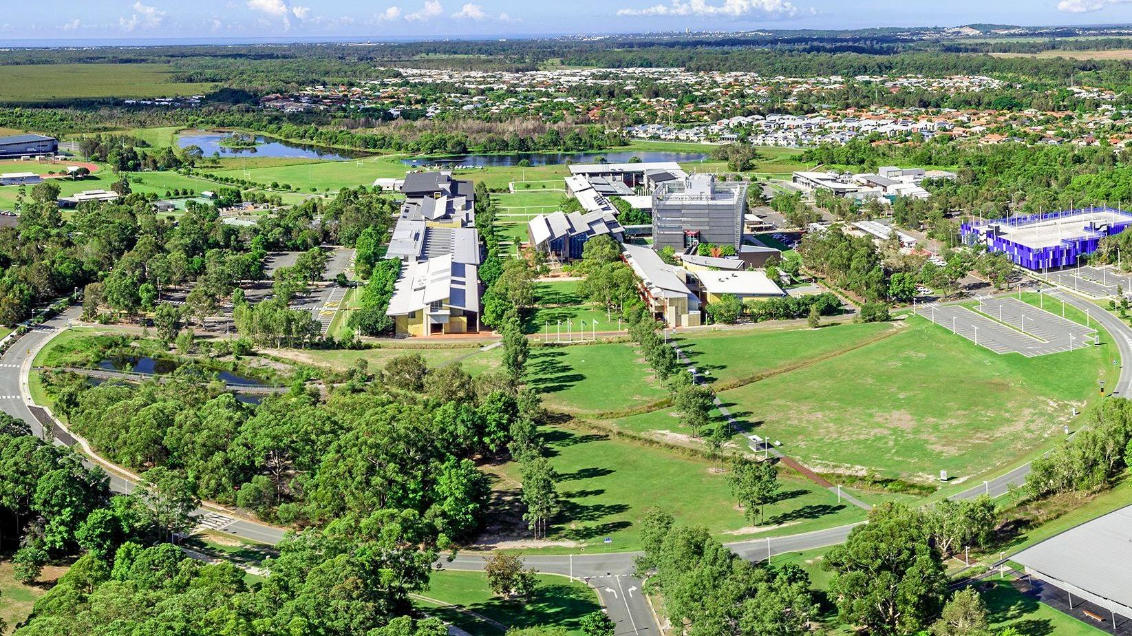 Sippy Downs grew quickly from grazing and sugar cane land in the late '80s to the biggest master-planned community on the Sunshine Coast for its time.