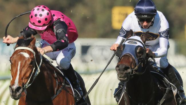 Dio D'Oro (right) will line up in the San Domenico Stakes. Picture: Getty Images