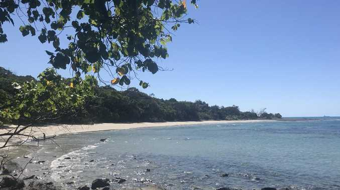 Emmagen Beach on the Daintree coast. Photo: Daniel Bateman