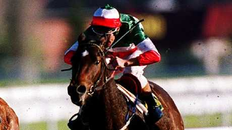 Testa Rossa won the 1999 San Domenico Stakes before going on to win a string of Group 1 races.