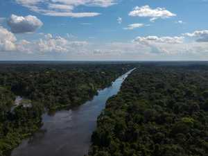 Rare drone glimpse of Amazon tribe