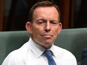Calls mount for Tony Abbott to quit politics