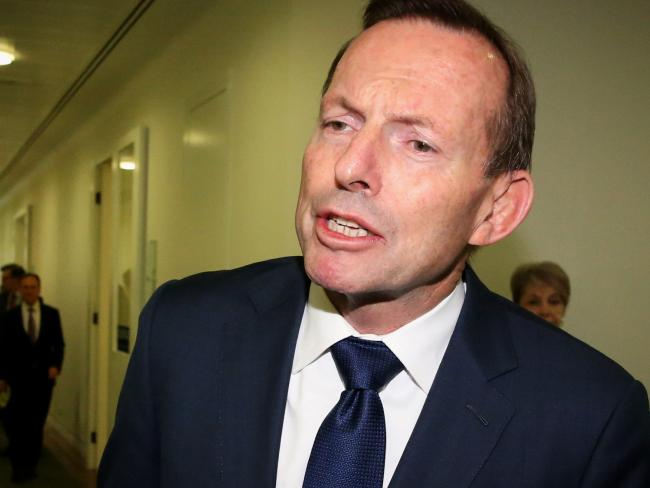 Tony Abbott played a key role in the downfall of Malcolm Turnbull. Picture: Ray Strange