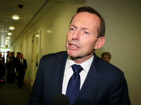 """Tony Abbott has been described as former Howard Government Minister Amanda Vanstone as a """"wrecker"""". Picture: Ray Strange."""