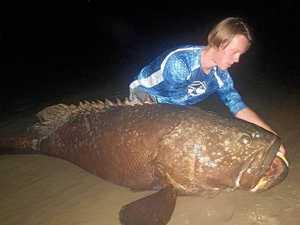 Noosa schoolboy lands 200kg river monster