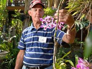 Open garden aids Heart Reach Australia's work in Vietnam
