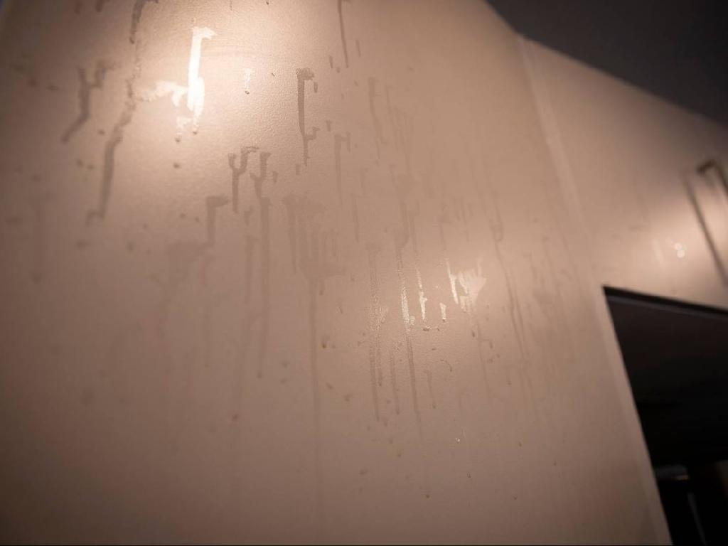 Weird marks on the walls. Picture: Dean Purcell/NZ Herald