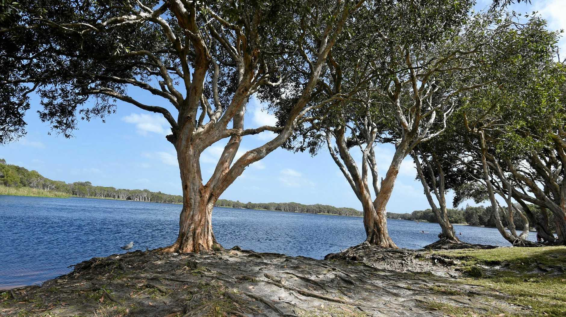 Ballina Shire Council will vote on a plan for Lake Ainsworth in an extraordinary meeting on Saturday.