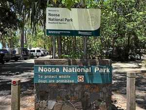Noosa's tough new parking laws