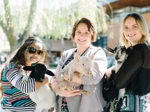 Toowoomba students enjoy a stress-less day on campus