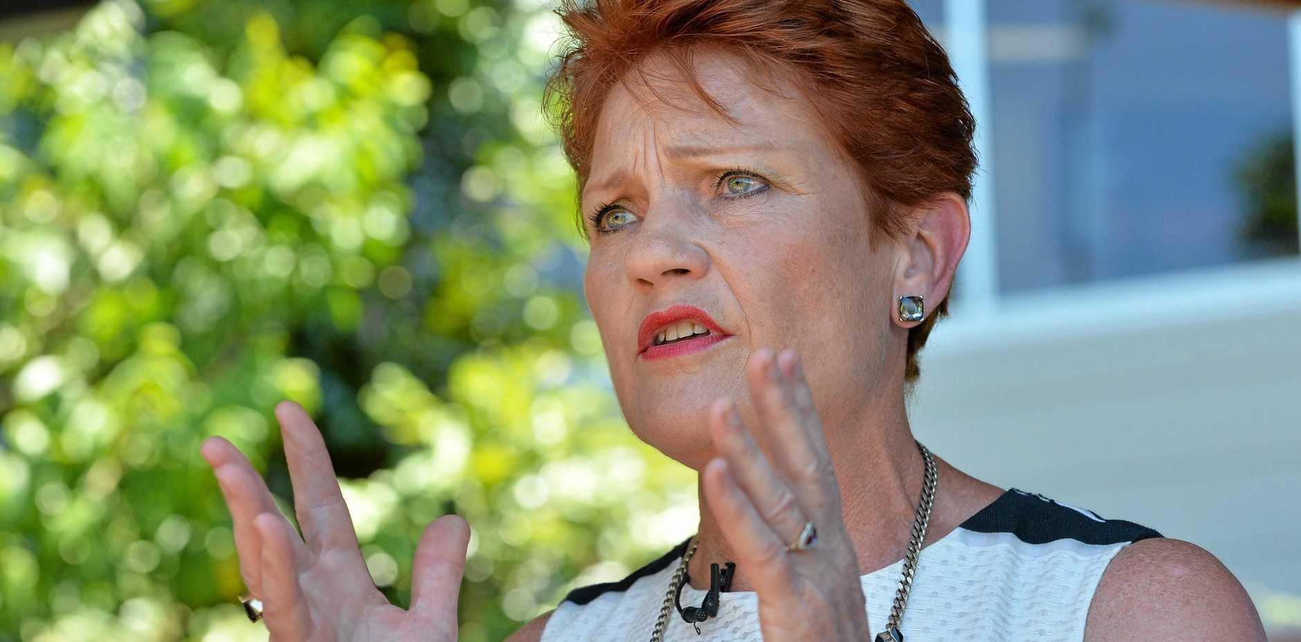 ONE NATION: Senator Pauline Hanson has gone on the attack on Hinkler MP Keith Pitt.