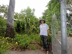 Food Forest is flourishing after four big years