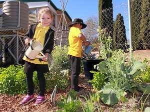 WAY TO GROW: Cute kids share big secret to successful garden
