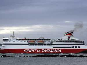 Claims horses suffocated aboard Spirit of Tasmania