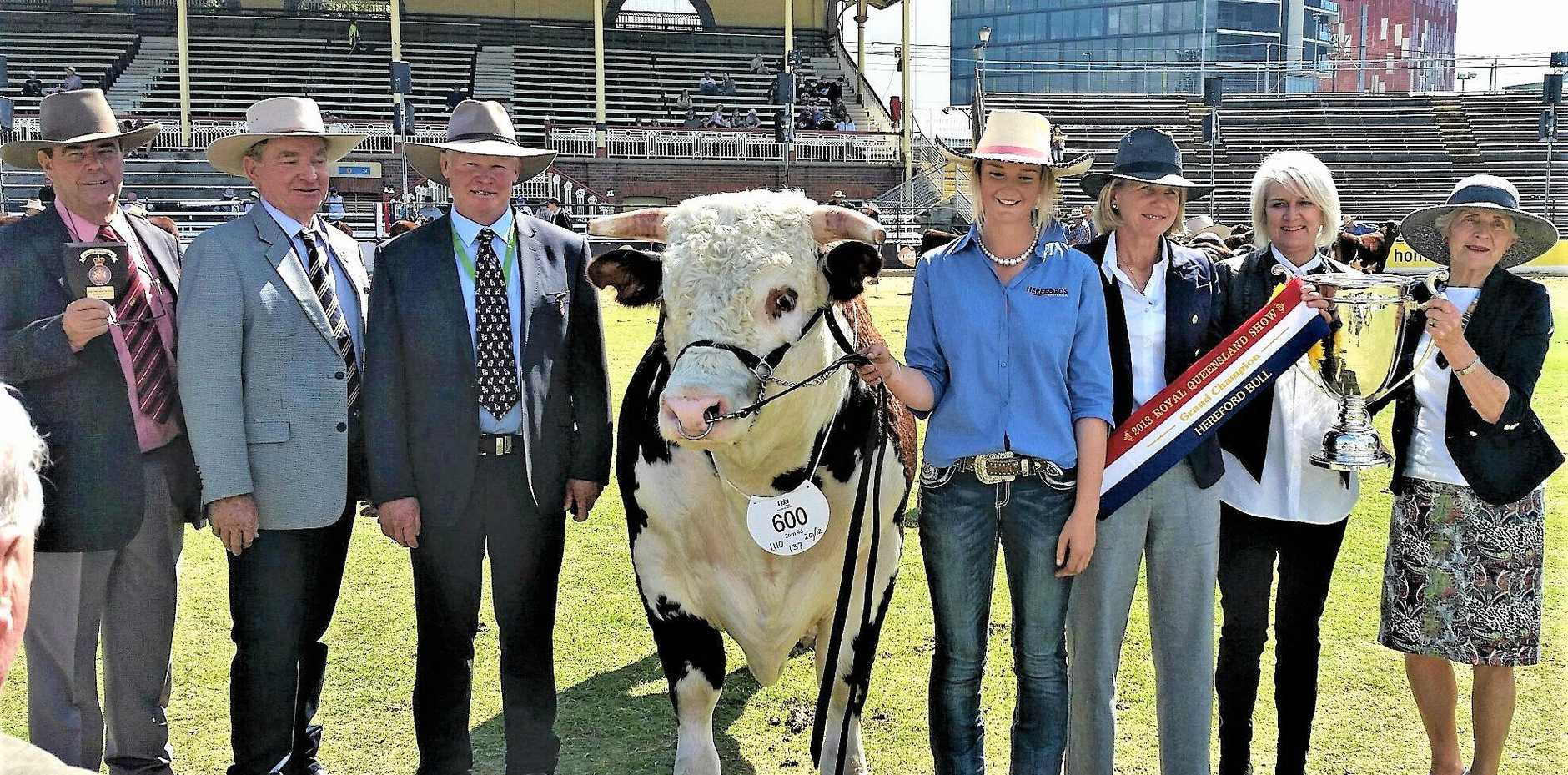 BIG WIN: Brian Kennedy from Elders presented the Shield of Excellence to owners Ian and Anne Galloway. Also pictured, judge Stephen Peake, leader Monique Miller, Catriona Pearce and Margie Adnam.