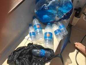 Mass of rubbish found in waters off reef