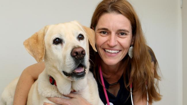 Charlotte Williamson's app WAGSTA fights obesity in dogs.