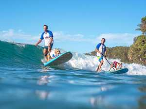 Dogs to stay as surfing festival plans for future