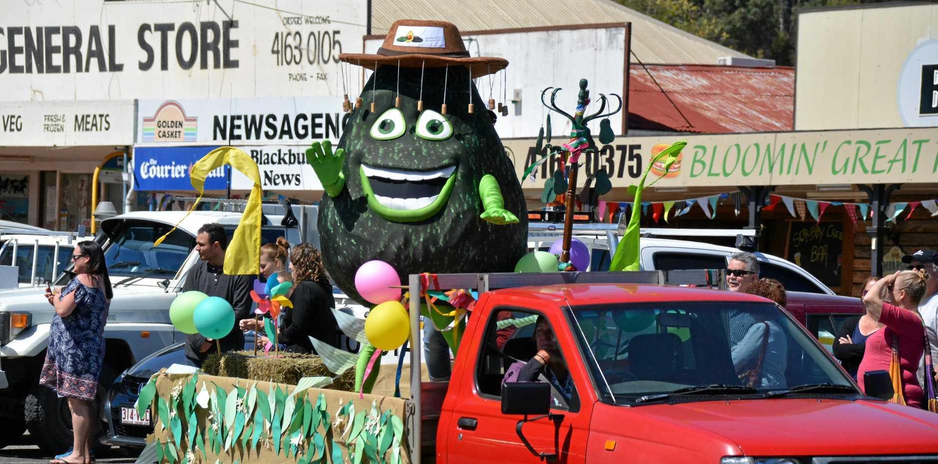 AVO-GO: Alvin the big avo in the Blackbutt Avocado Festival street parade last year.