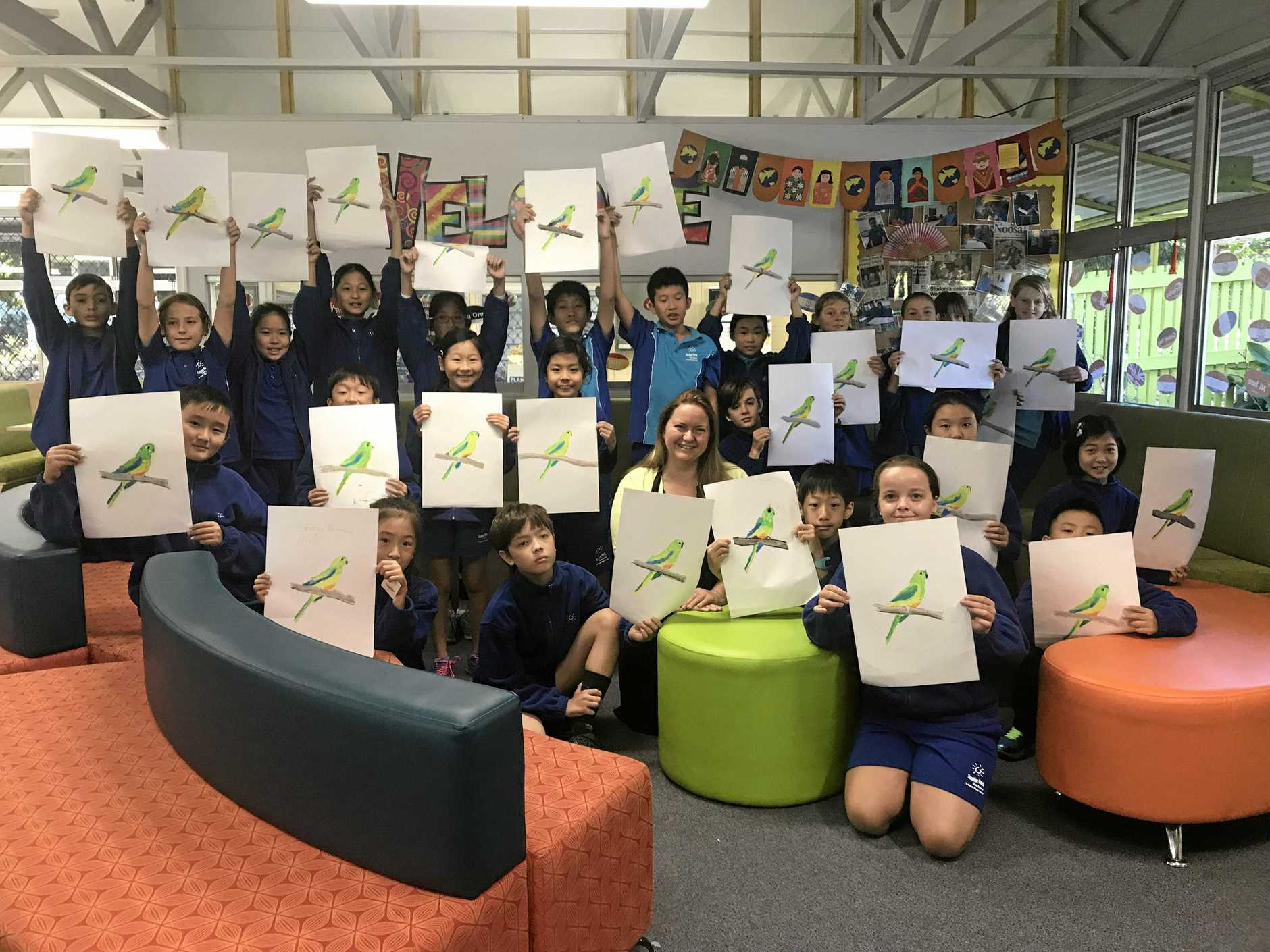 Sunshine Beach State School students show the results of their lesson from local artist Rachael Curry about drawing the critically endangered Orange Bellied Parrot.