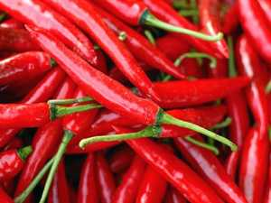 SPICE ALERT: Chilli Fest to return