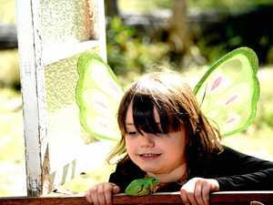 Free fairy fun at the Australiana Cottage