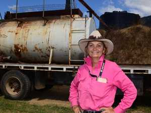 DROUGHT: Dire need to find new feed