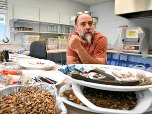 Experienced conservationist named as chair of marine group