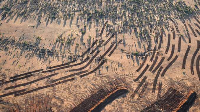 Rain misses much of NSW drought areas. Picture: David Mariuz/AAP