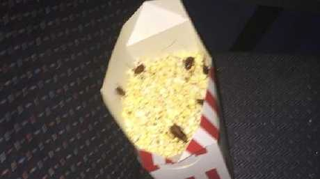Cockroaches were discovered in a Brisbane couple's popcorn at Morayfield Birch Carroll and Coyle cinemas. Photo: Shaun Walsh