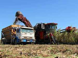 Competition watchdog support for sugar code a 'game changer'