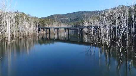 Ghost trees line the banks of Hinze Dam. Photo from drone footage by Glenn Hampson.