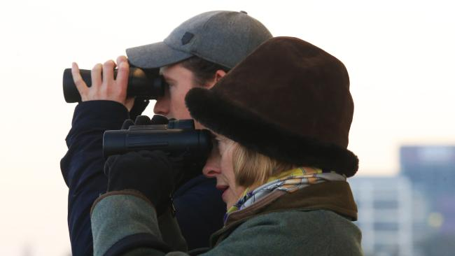 Trainer Gai Waterhouse and new training partner Adrian Bott keep a close eye on trackwork. Picture: Mark Evans