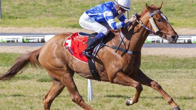 Exciting three-year-old Gytrash wins impressively at Morphettville in July. Picture: Atkins Photography