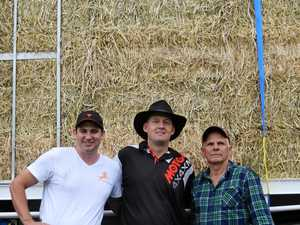 Southern Downs farmers rejoice over rain and free hay