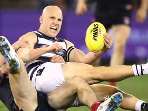 Cats weren't good enough, admits Scott