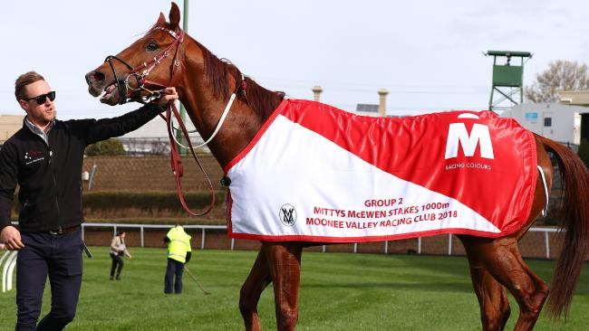 Nature Strip after his win at Moonee Valley on Saturday. Picture: AAP