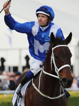 Winx returns to scale after winning the Winx Stakes.