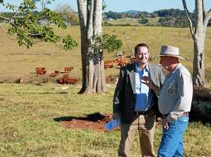 Maleny farmers get federal grant boost