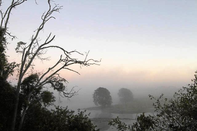MISTY MORNING: A view of the Burnett River at Sandy Hook.